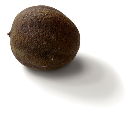 rather dark, round dehyrated lime